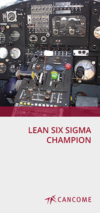 Lean Six Sigma Champion